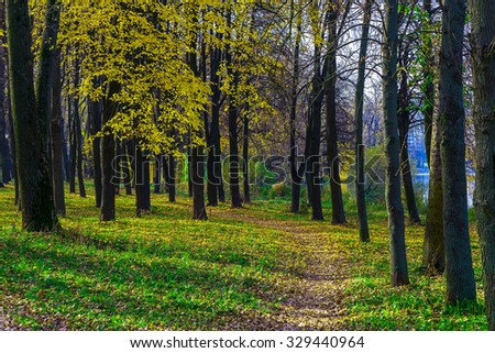 Autumn Park with Footpath in Dry Fallen Leaves Leading into the Distance and Trees - stock photo