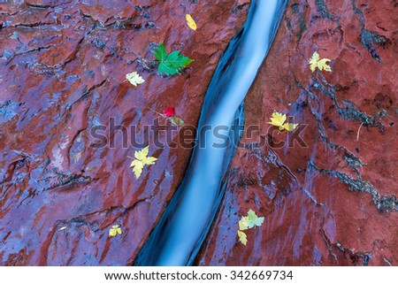 Autumn picture with a stream and yellow leaves. Blue water in the stream is shown for better contrast with yellow leaves. - stock photo