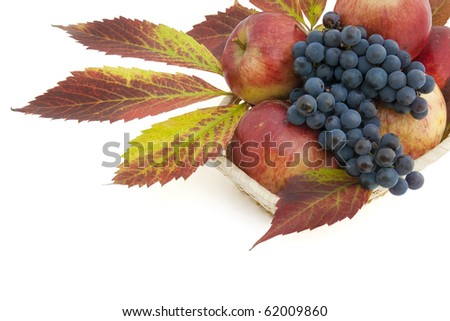 Autumn postcard with apples, grapes and leaves in small basket. Isolated on white.
