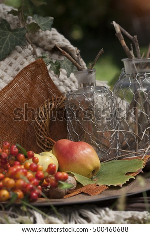 Autumn produce, fruits and berries
