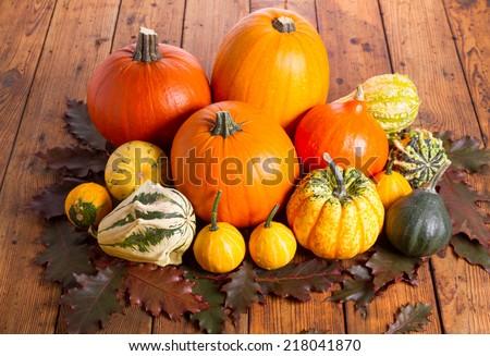 Autumn pumkin - stock photo