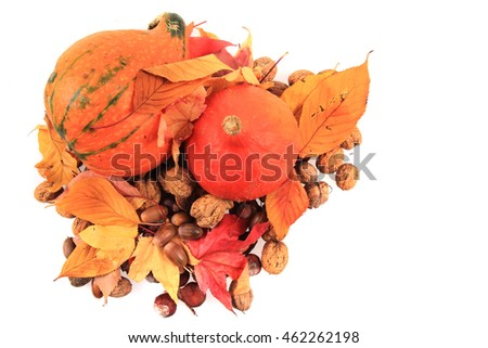 autumn pumpkins and leaves isolated on the white background