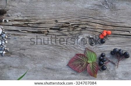 Autumn Raspberry Leaves, Rowan Berries and Stones on the Old Board - stock photo