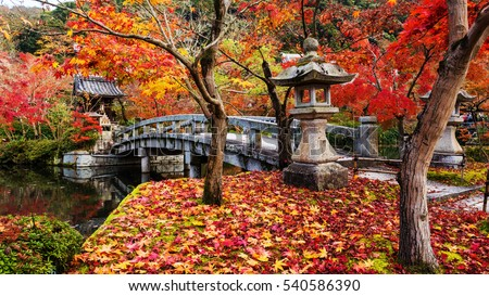 Autumn red maple foliage surround Eikando shrine and bridge, Kyoto, Japan. It's the peak fall colors period on 22 Nov 2016.