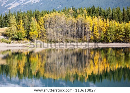 Autumn reflection in Wedge Pond