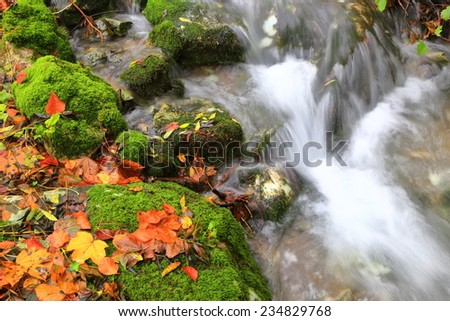Autumn river flowing over moss covered rocks and orange leaves  - stock photo