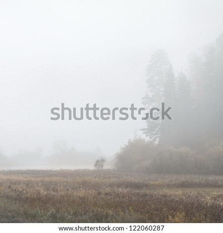 Autumn river scene in strong fog