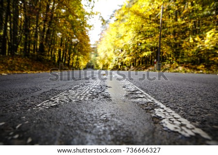 autumn road and free space