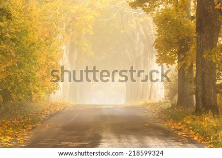 Autumn road in north Poland - stock photo