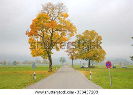 Autumn road on a foggy and gloomy day ~ Autumn scenery of Bavarian countryside in Schwangau, Germany