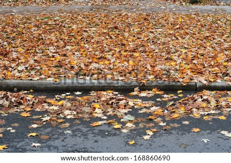 Autumn road with heaps of fallen leaves in rainy day - stock photo
