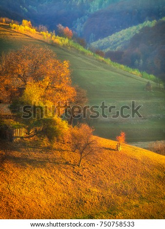 Autumn Rustic Landscape With Barn In Carpathian Mountains Transylvania Romania