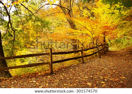 Autumn scene landscape at Letchworth State Park - stock photo