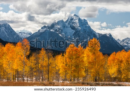 Autumn scene of the snowy Teton range with fiery aspens in the foreground - stock photo