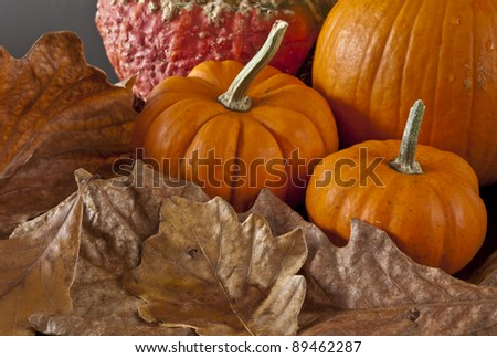Autumn scene with leaves acorns and pumpkin - stock photo