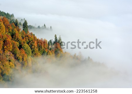 Autumn scene with mountains in fog on background - stock photo