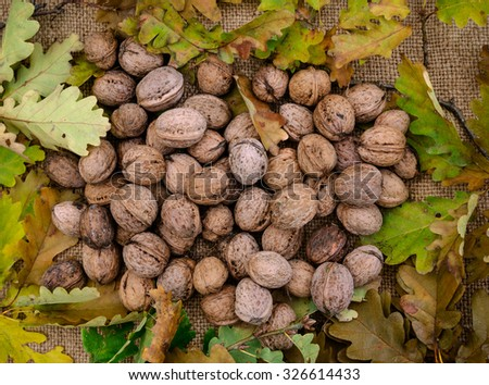 Autumn scene with walnuts and dry leaves on a wooden background