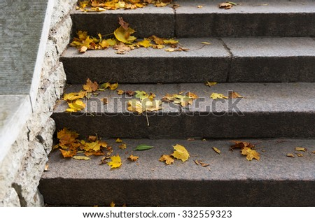autumn, season and nature concept - close up of fallen maple leaves on stone stairs