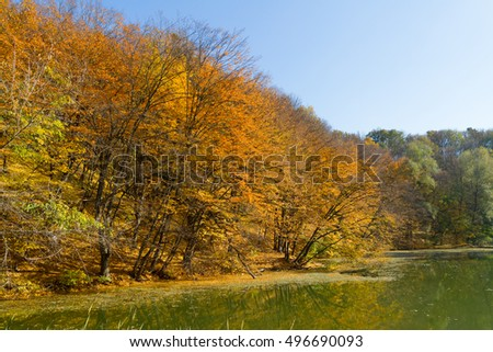 Autumn season landscape with colorful trees