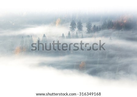 Autumn season, wild forest in the sunrise misty fog and clouds - stock photo