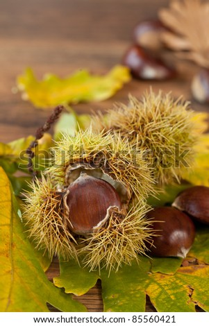 Autumn seasonal background with leaves and chestnuts