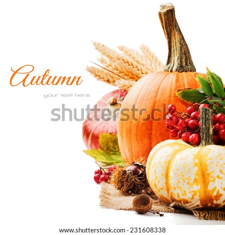 Autumn setting with various pumpkins and rowan berry - stock photo