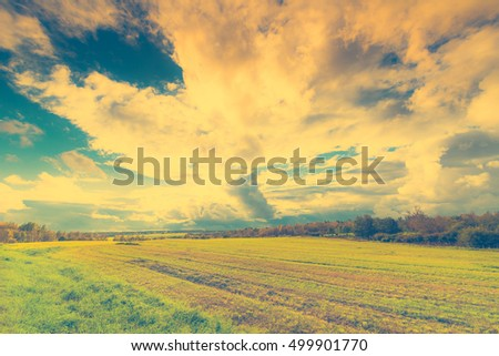 Autumn sky in the clouds lit by the sun over the boundless fields of the forest. Wide angle view, image vignetting and the blue-yellow toning