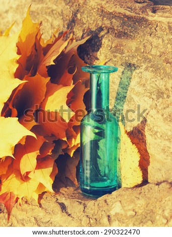autumn still life, maple leaves and blue vase - stock photo
