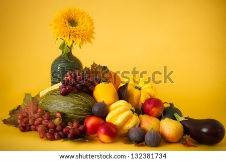 Autumn still life of squashes, sweet corn, fruits and sunflower on yellow background