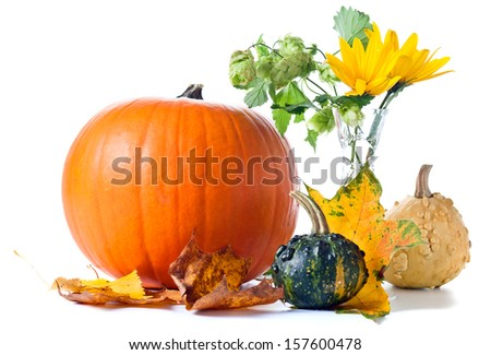 Autumn still-life . pumpkins, hop and yellow leaves ,isolated on white