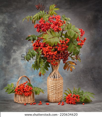 Autumn still life.Rowan branches in a vase and basket