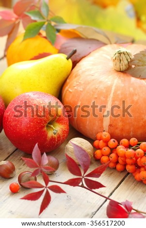 Autumn still life with assorted fruit, vegetables, berries and nuts - stock photo