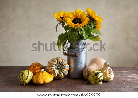 Autumn Still-Life with different shaped and colored pumpkins
