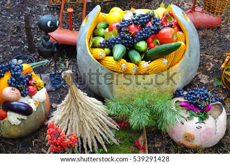 Autumn Still Life with Fruit and vegetables outdoors