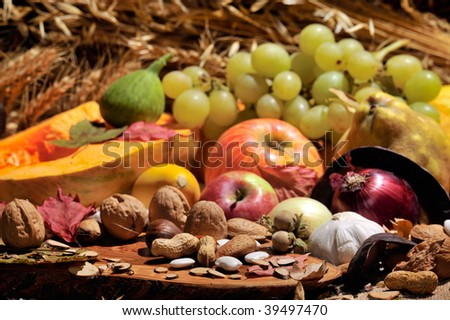 autumn still-life with fruits and vegetables - stock photo