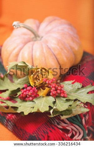 Autumn still life with pumpkin, plaid, berries and leaves on orange background. Selective focus. Space for text. Blurred image. - stock photo