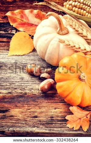 Autumn still-life with pumpkins and acorns on wooden background - stock photo