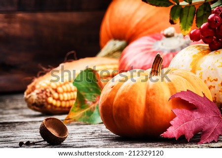 Autumn still-life with pumpkins and corn - stock photo