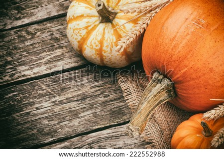 Autumn still-life with pumpkins on wooden background - stock photo