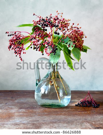 Autumn Still-Life with ripe black Elder Berries and juice