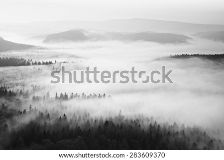 Autumn sunrise in a beautiful mountain within inversion. Peaks of hills increased from foggy background. - stock photo