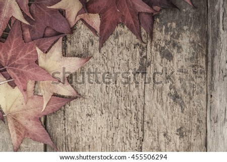 autumn template with colorful leaves - stock photo