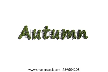 Autumn text tree with white background concept of typography - stock photo