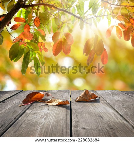 Autumn theme and wooden deck table - stock photo