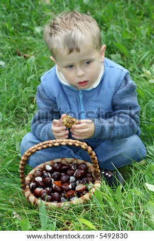 autumn time - 3-4 years old boy with basket of chestnuts