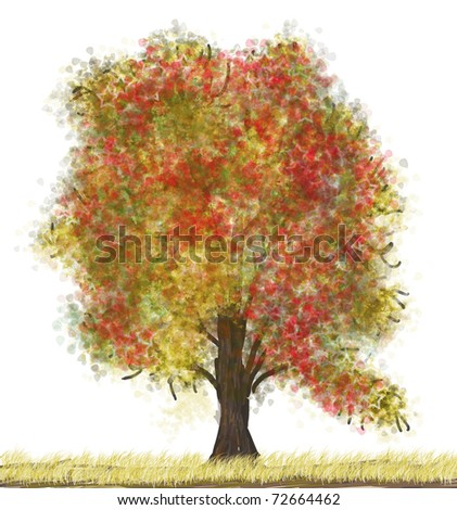 autumn tree isolated on the white background