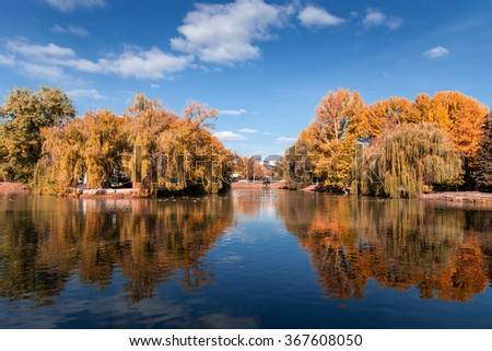 Autumn tree reflection in water lake at daytime
