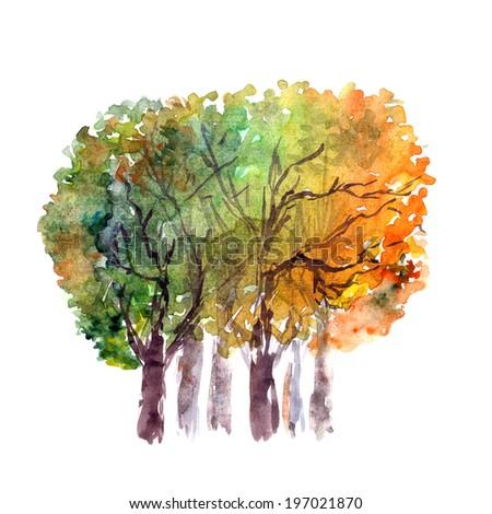 Autumn trees. - stock photo