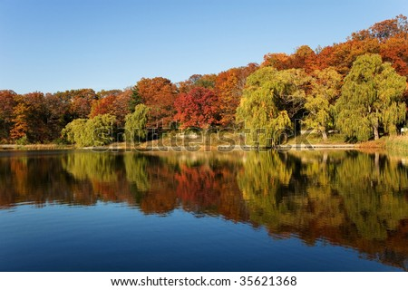 autumn trees are reflected in a grand pond
