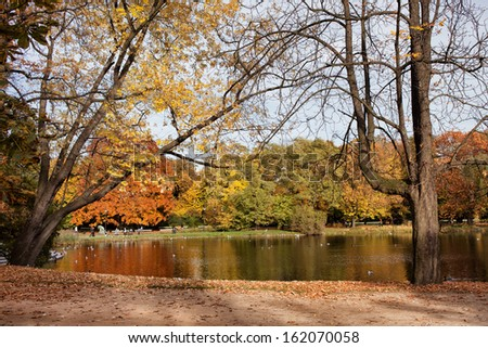 Autumn trees by the pond in the Ujazdowski Park, city center of Warsaw, Poland.